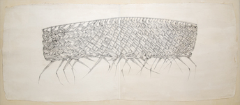 Desmond Lazaro, Coconut palm leaf drawing, 2012, © Desmond Lazaro