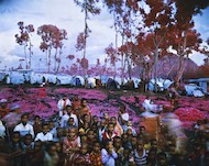 Richard Mosse, Lost Fun Zone, 2012