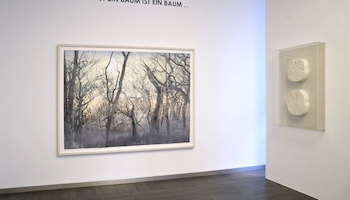 Baum, Beck & Eggeling IFA, Düsseldorf 2015 (c) Beck & Eggeling International Fine Art